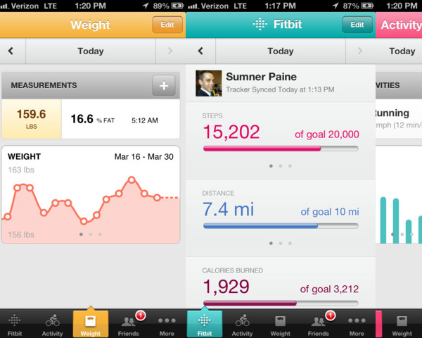 charts_graphs_examples_10fitbit