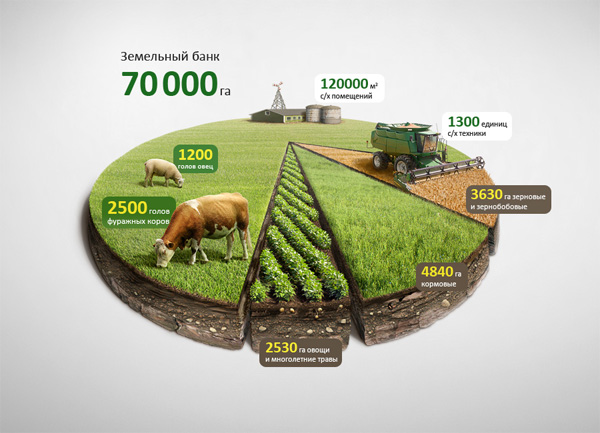 charts_graphs_examples_24agroillustration